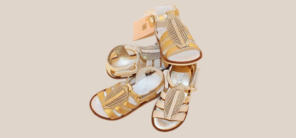 evolution calzature